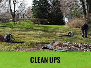 Clean Ups - Cut Rite Outdoor Services, LLC