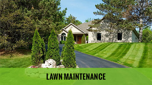 Lawn Maintenance - Cut Rite Outdoor Services, LLC