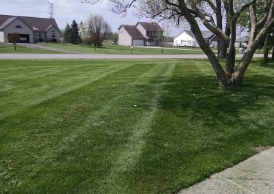 mowing5