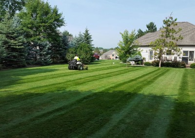 mowing6