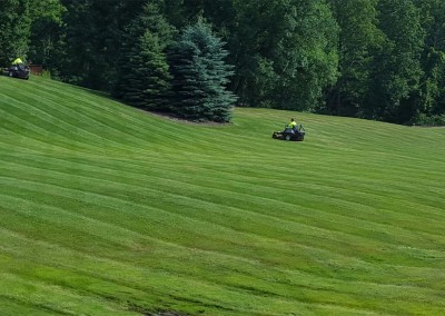 mowing8